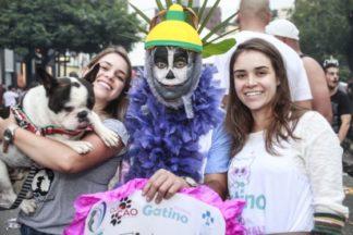 Bloco de Carnaval arrecada alimentos para cães e gatos resgatados das ruas