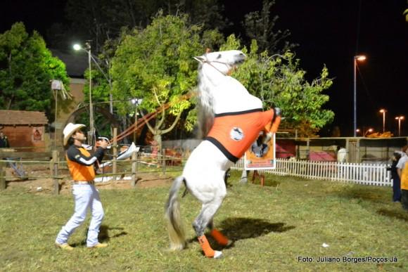 Adestrador faz demonstração na Festa Uai.